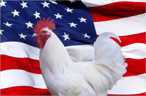 Freedom isn't KFC